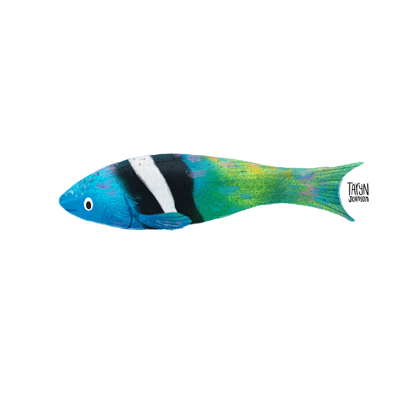 Fish039_tarynjohnson.jpg