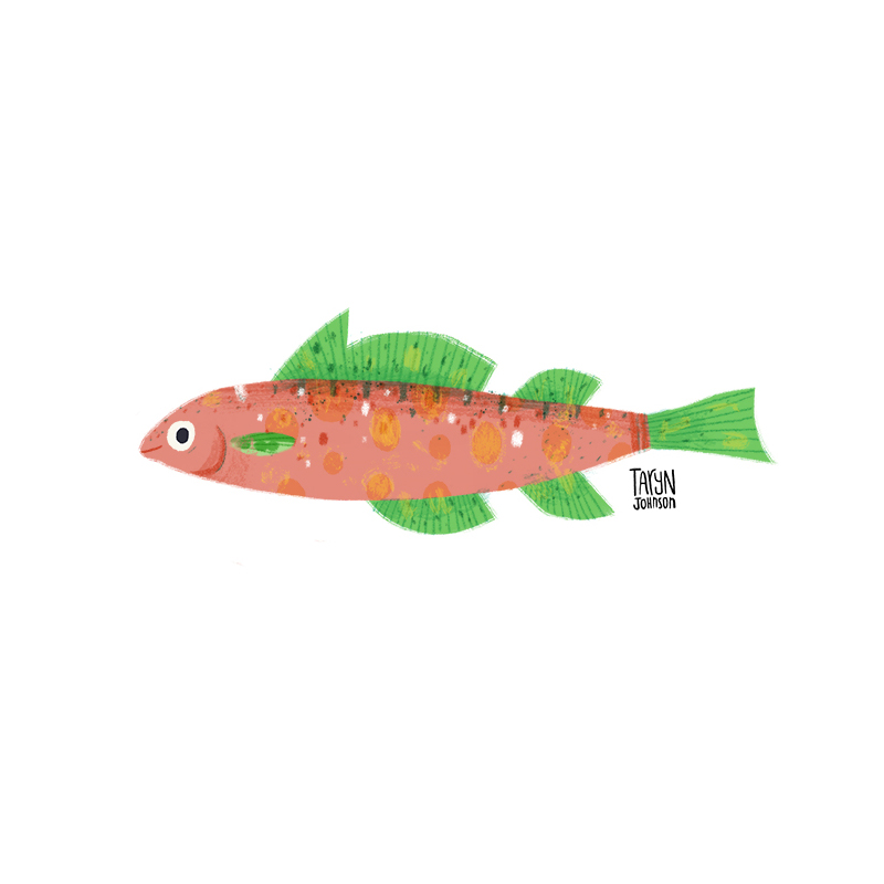 Fish043_tarynjohnson.jpg