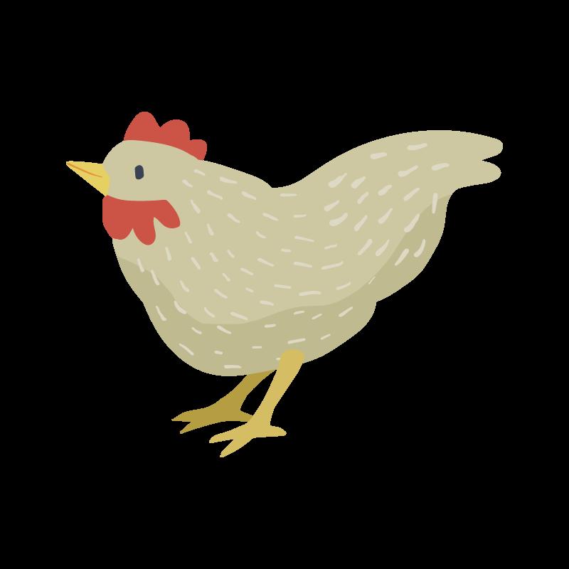 BCH_FirstSounds_chicken.png