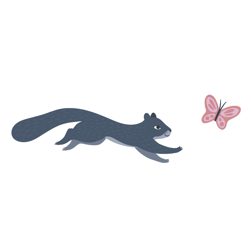 BCH_Sentence_squirrel_1.png