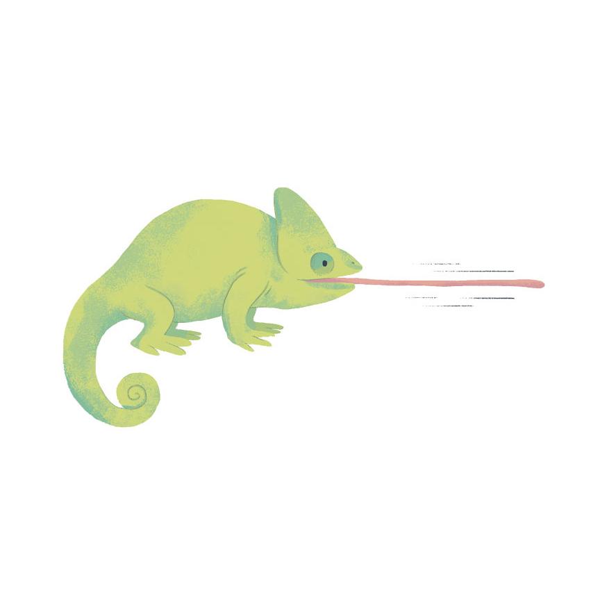 TAKE_14_109-110_chameleon_tongue.jpg