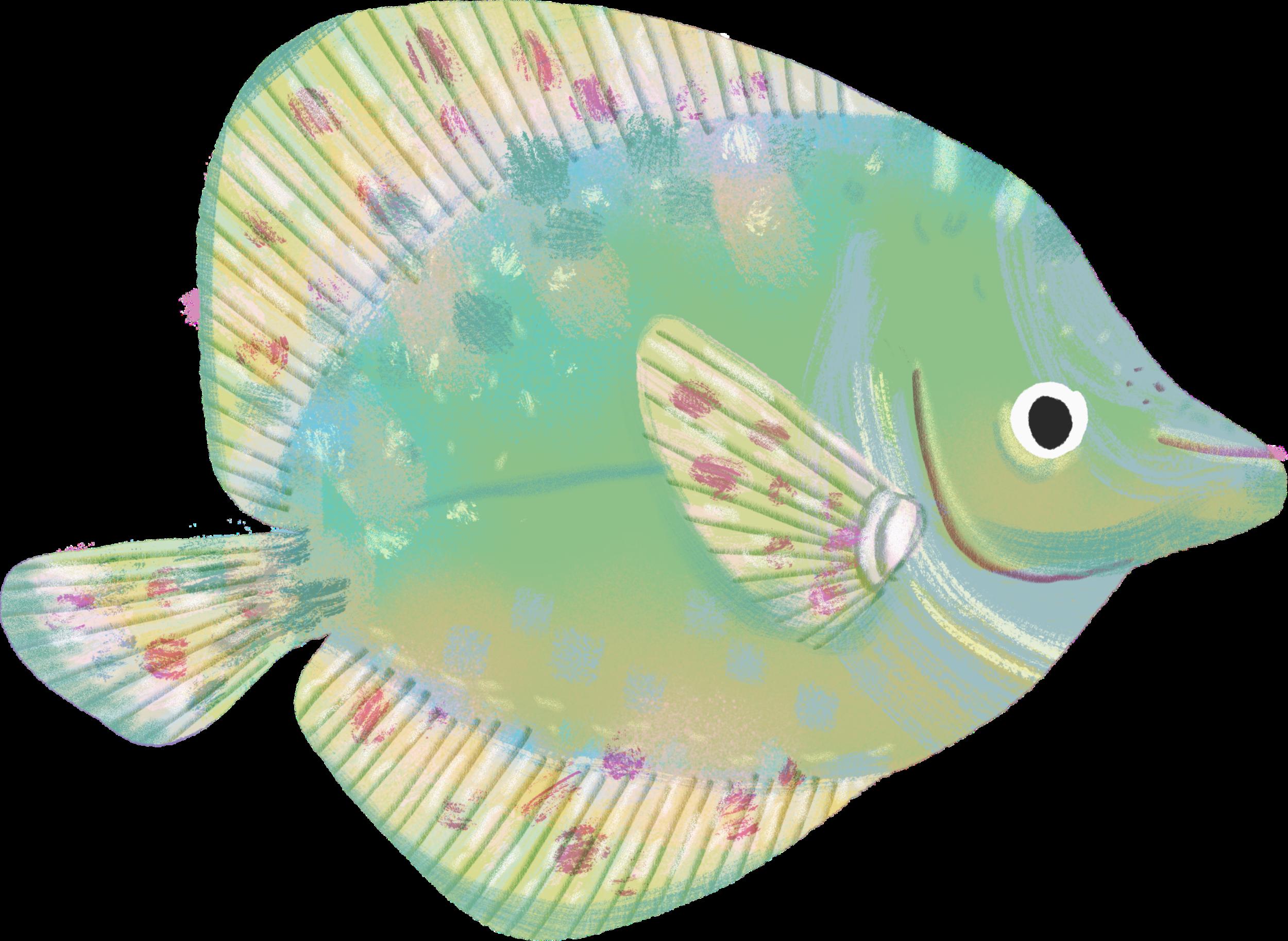 Fish077.png