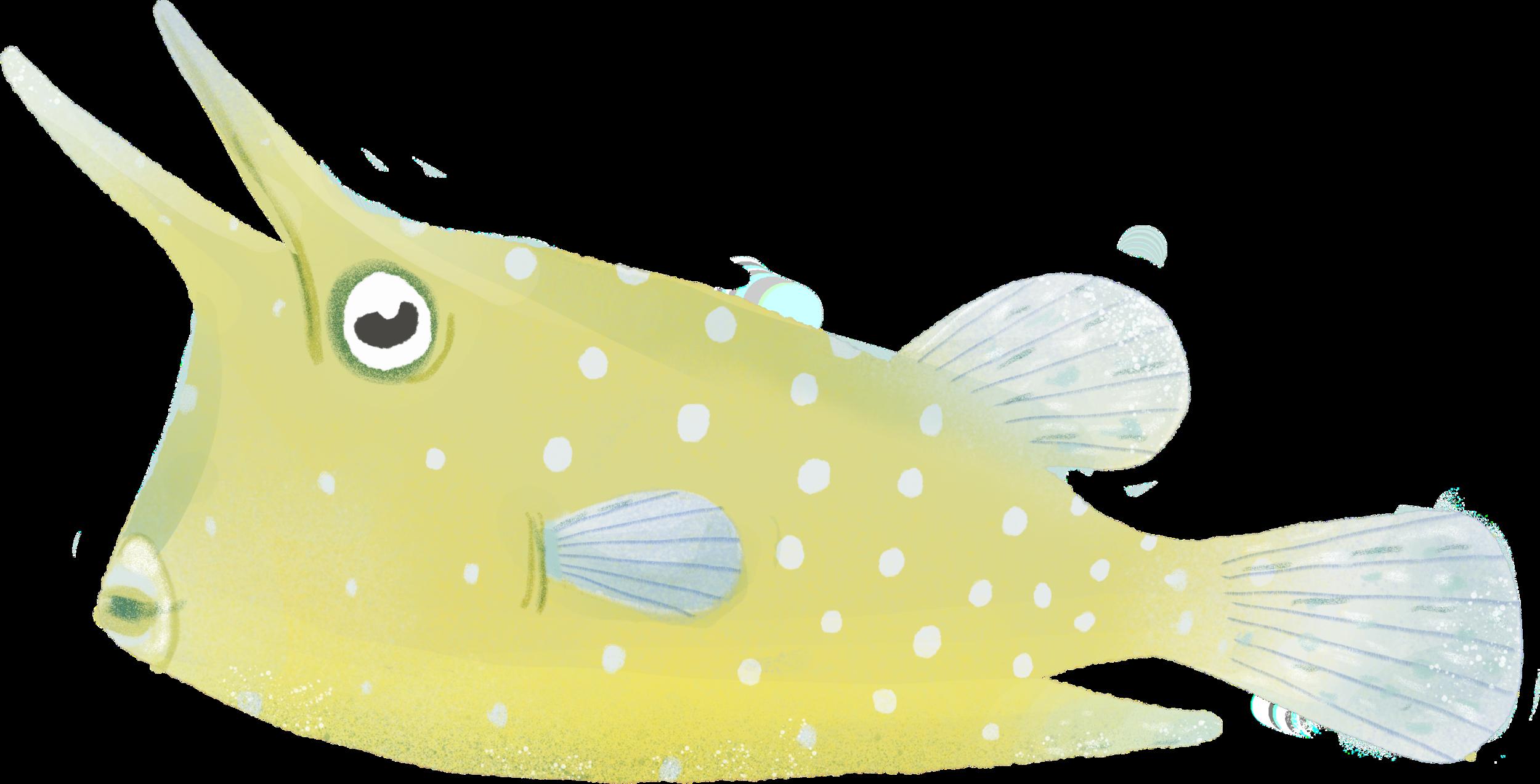 Fish082.png