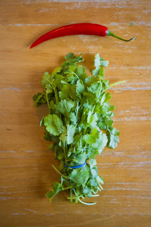 Salad_MG_3031.jpg