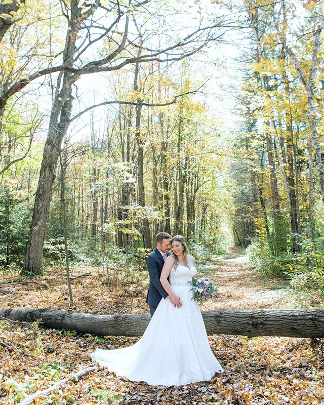 Finishing up the photos for these two with the perfect fall setting . . . . . . . #wedding #toronto #engaged #torontowedding #afghanbride #torontoafghanphotographer #torontoweddingphotographer #torontofemalephotographer #torontoweddingphotography #happilyeverafter #married #aroos #aroosi #gelin #bride #weddinginspiration #love #torontoweddings #cananstudio #weddings #hamiltonwedding #hamiltonweddingphotographer #turkishwedding #persianwedding #iraniantoronto #afghanweddingtoronto #torontopersianwedding #bridalparty