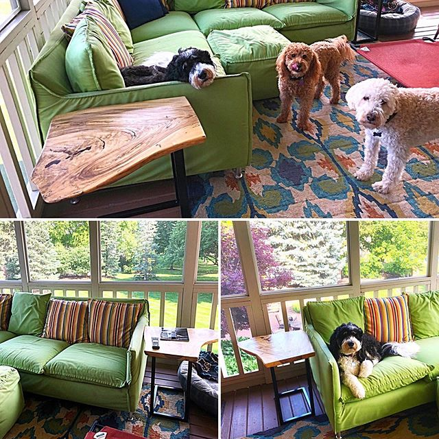 Built these Hackberry end tables for a customers sunroom.  Love the dogs!