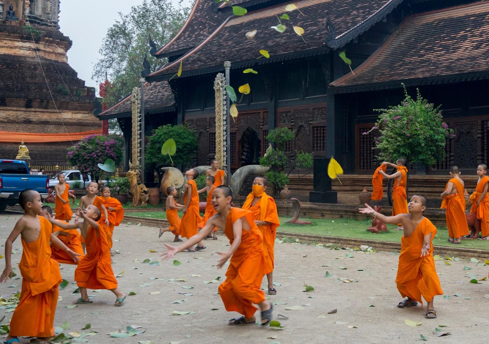 ThailandWeek16_15.jpg
