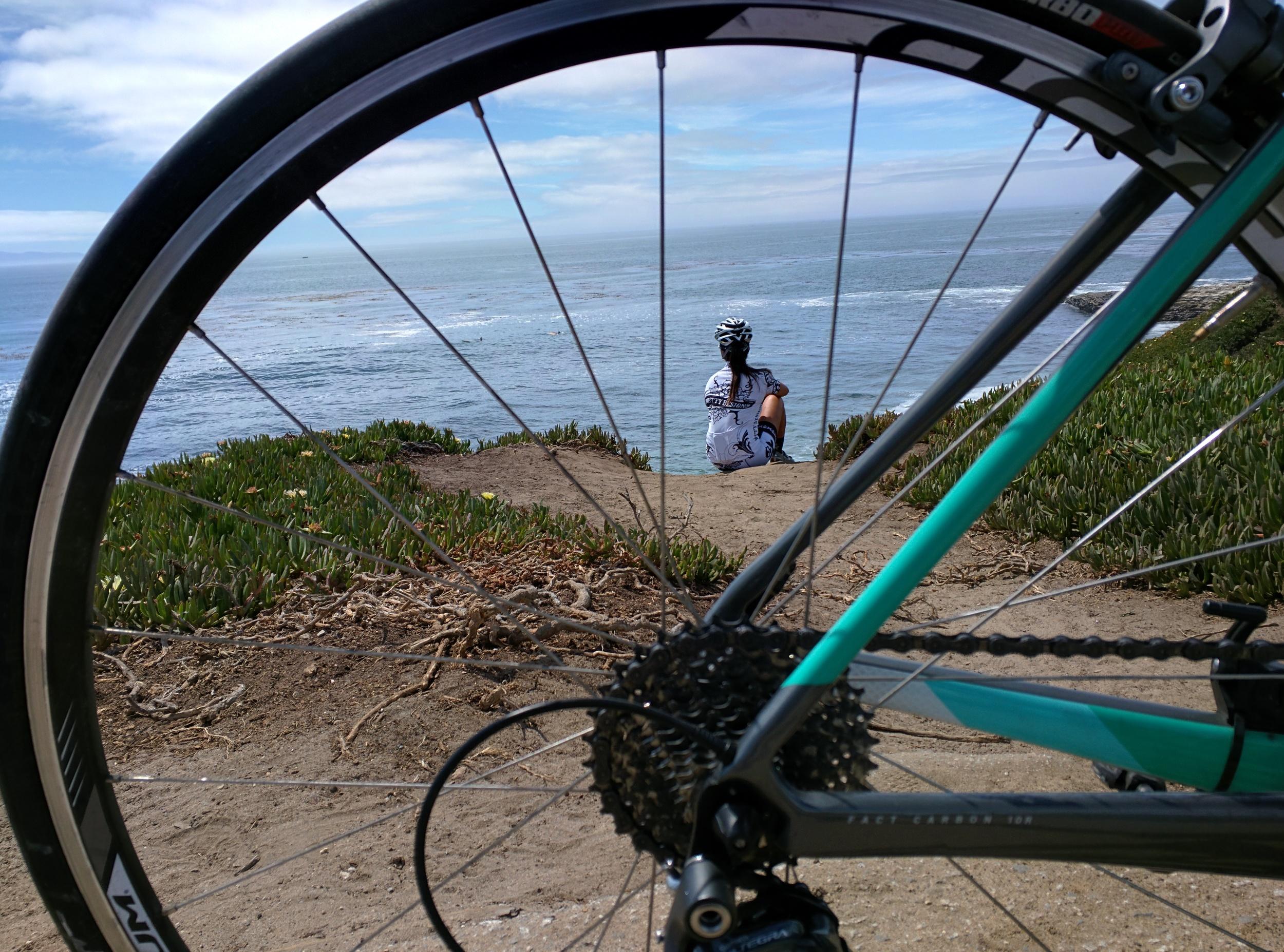 Overlooking Natural Bridges in Santa Cruz.