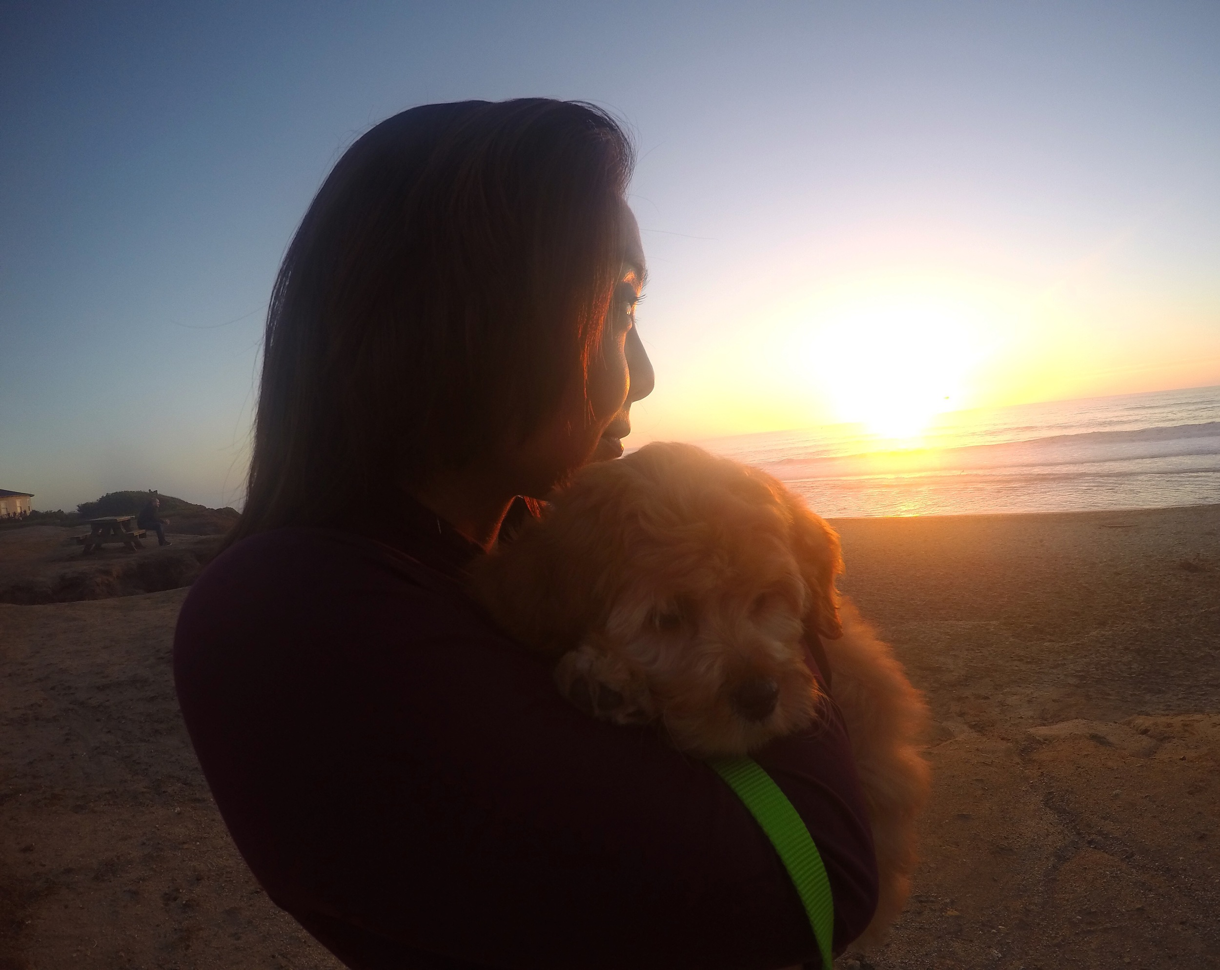 Molly's first sunset and visit to the beach...                                      (Photo: J. Torralba)