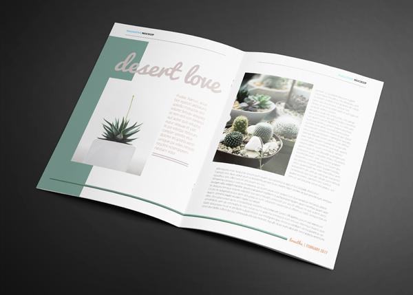 Desert Love Page | Lot 17 Media.jpg