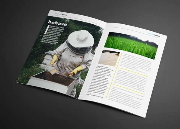 Farm to Table Magazine Template | Lot 17 Media