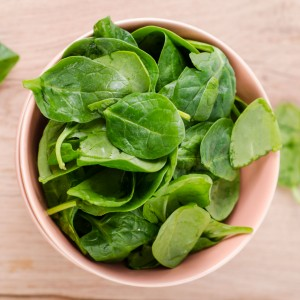 spinach-large_300x300_96.jpg