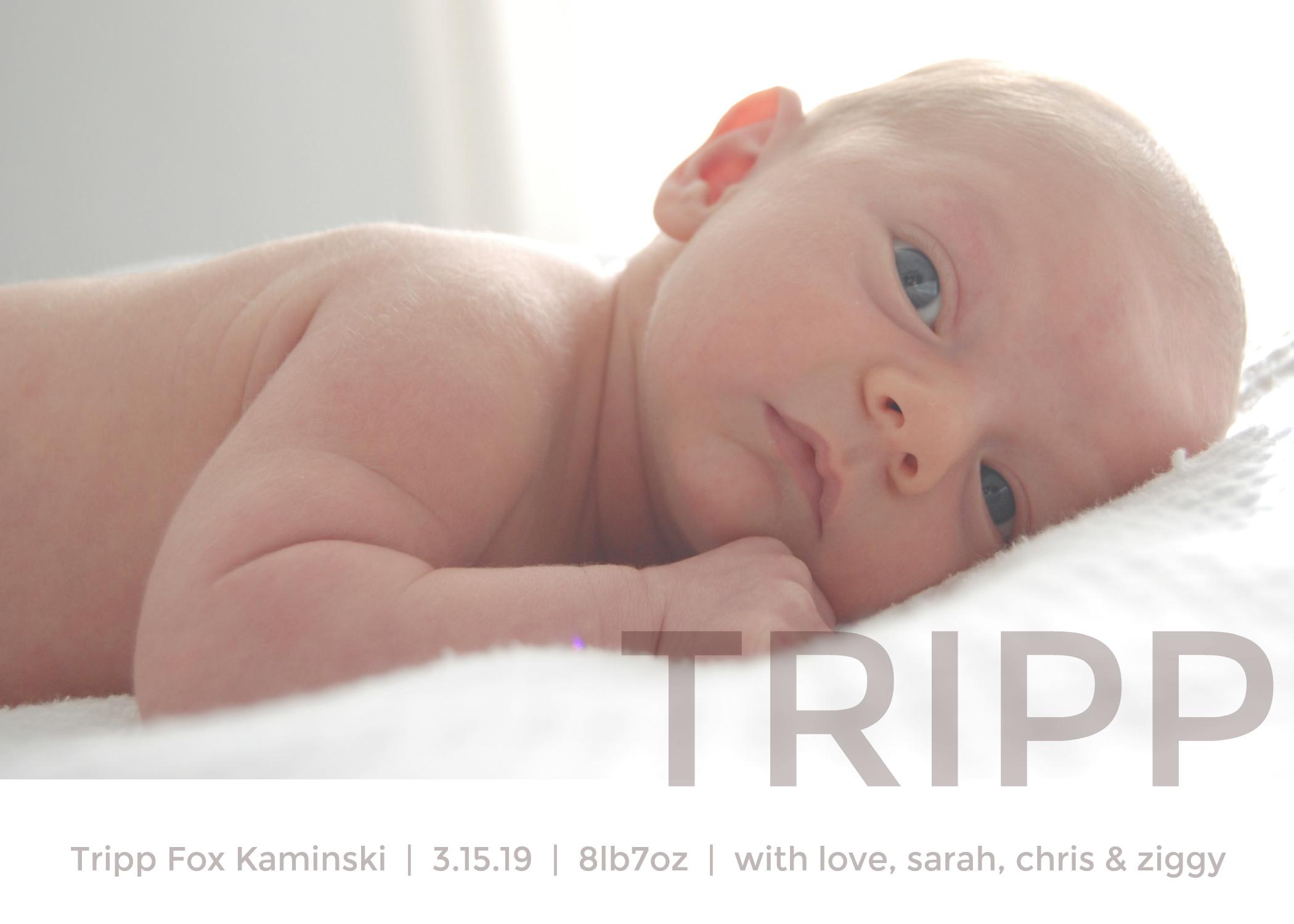 tripp final.jpg