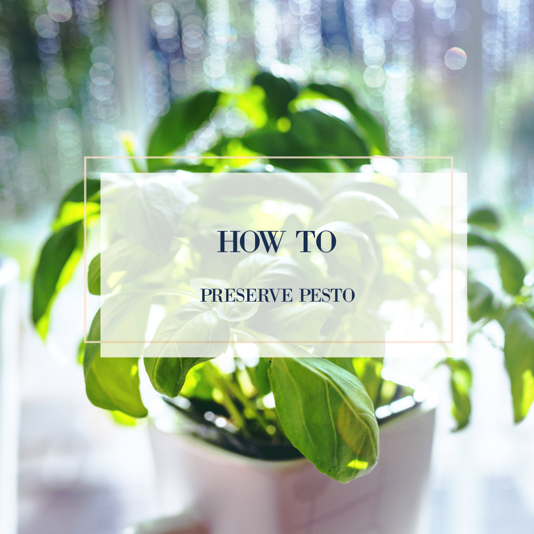 how to preserve pesto.jpg