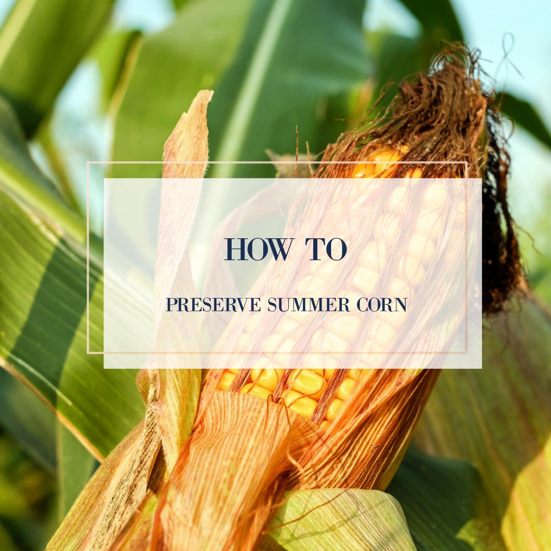 how to preserve summer corn .jpg