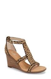 leopard 4.jpg