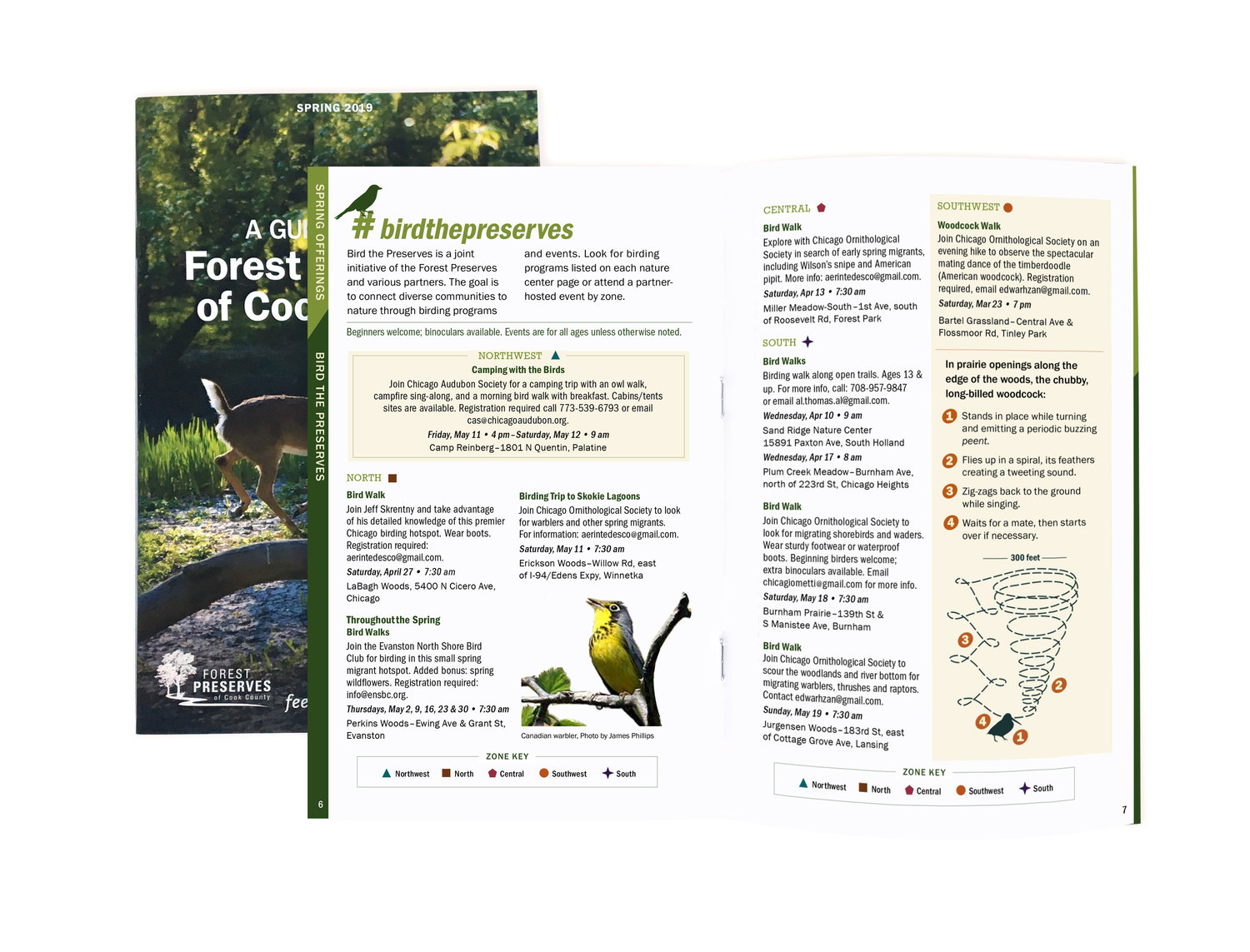 Brochure Redesign — New Forest