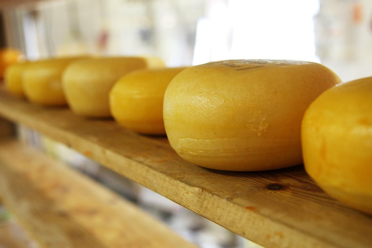 cheese-2785_1280.jpg
