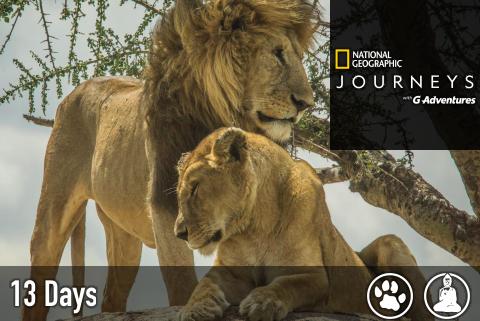 safari-kenya-tanzania-1.png