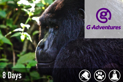culture-wildlife-uganda-rwanda.png
