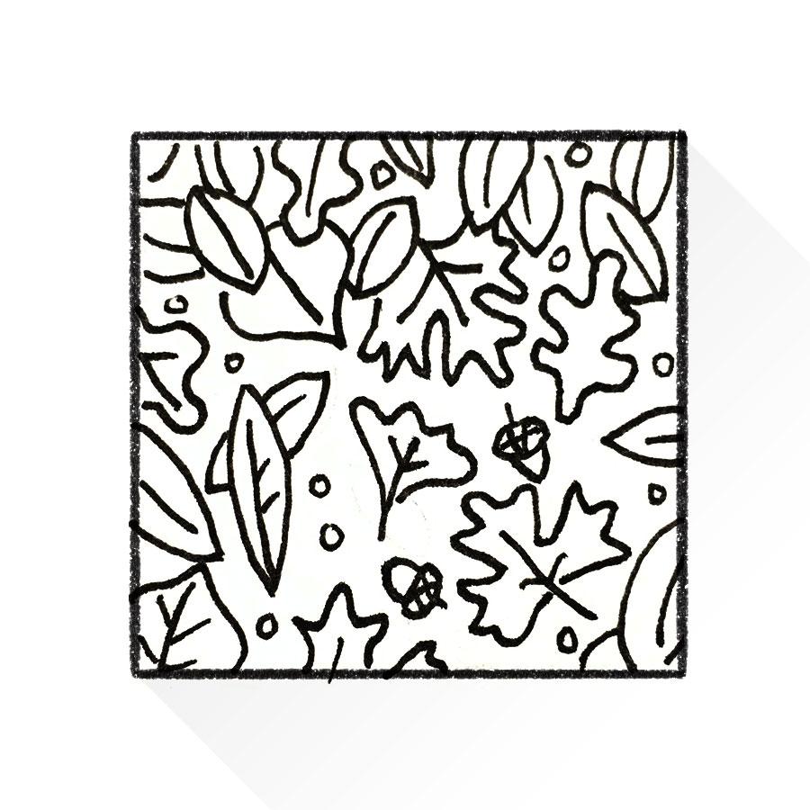 Sketch_Leaves.jpg