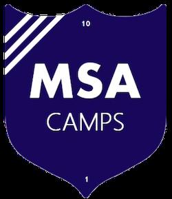 msa-logo-sm.png