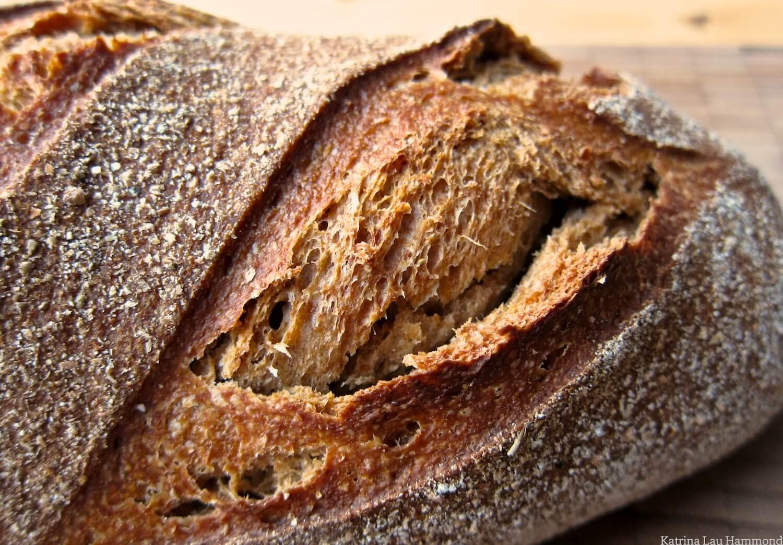 Bursting_bread_crust_KLH.jpg