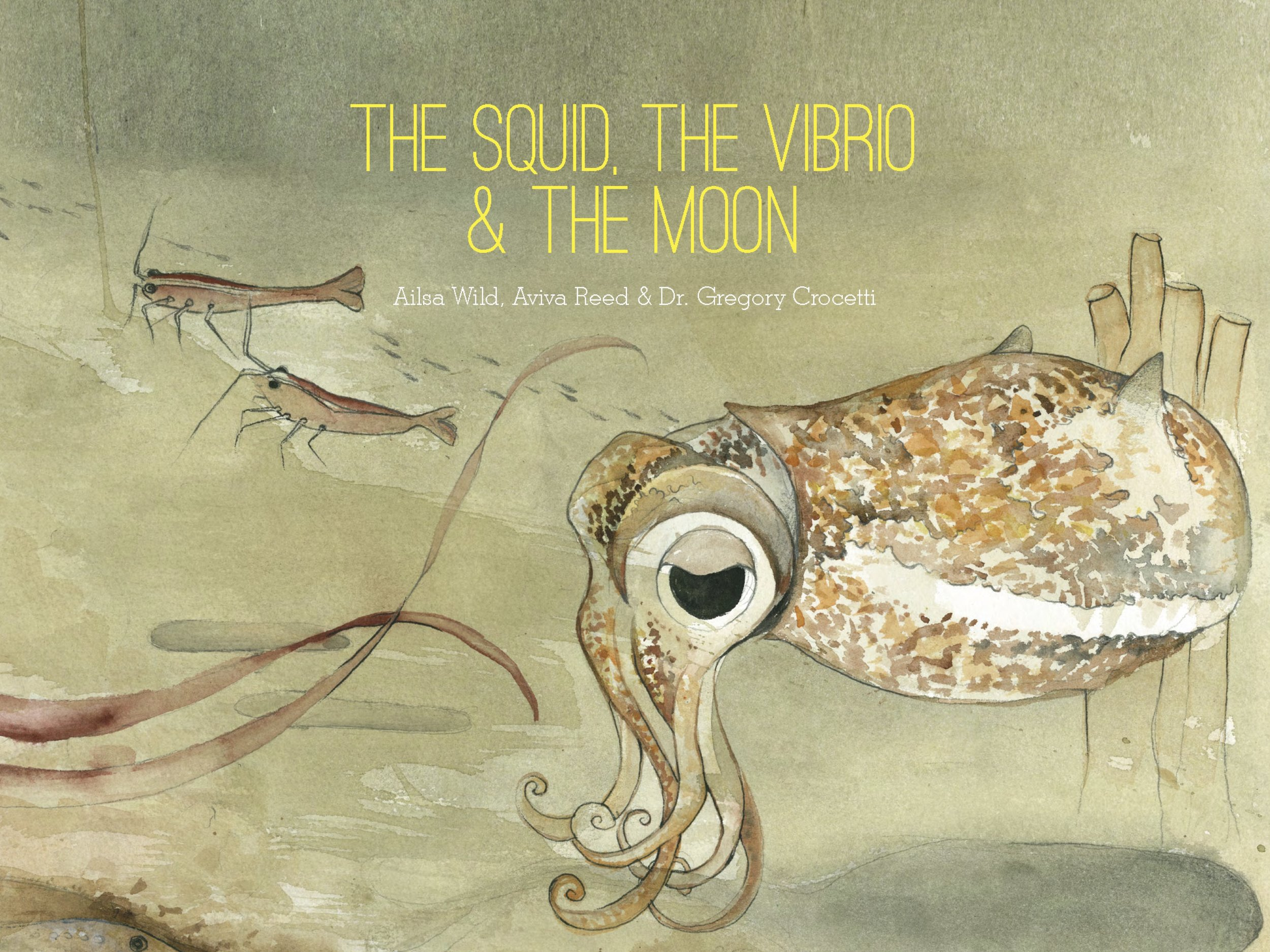 Cover of The Squid, the Vibrio & the Moon. Written by Ailsa Wild, Illustrated by Aviva Reed and Created by Dr. Gregory Crocetti. Published by Scale Free Network, 2014.