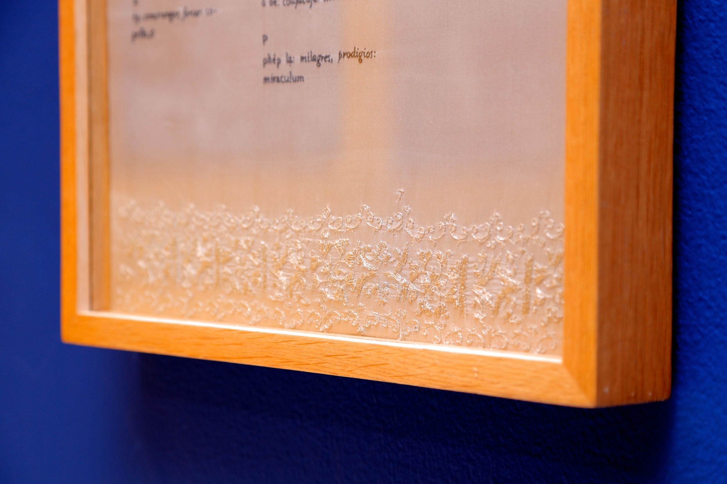 Thao-Nguyen Phan   'The Alphabet' (detail), 2014    Hand embroidery: silk, silk thread, wood    40 x 60cm, ed.3 + 1AP