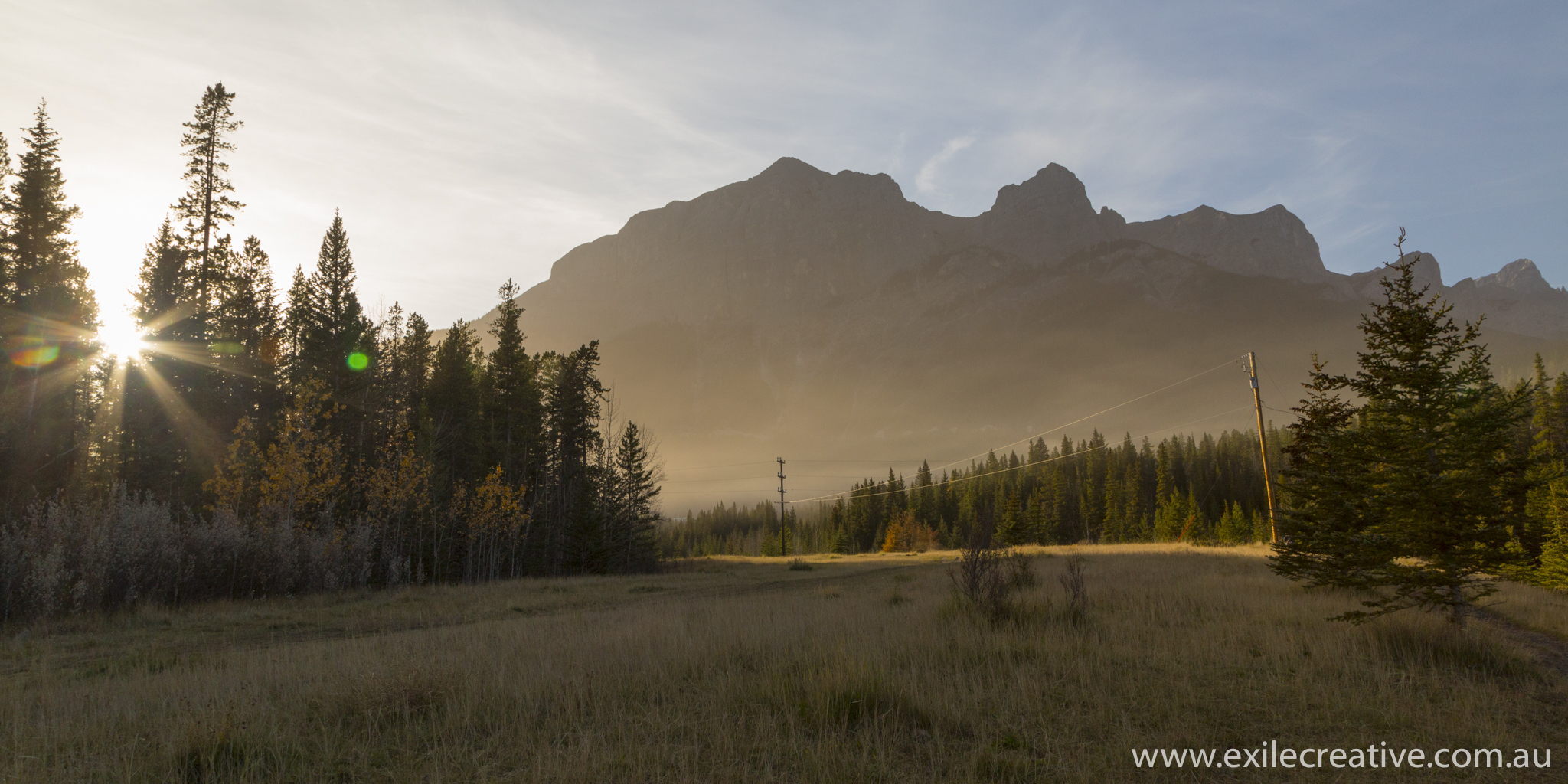 The dog park in Canmore