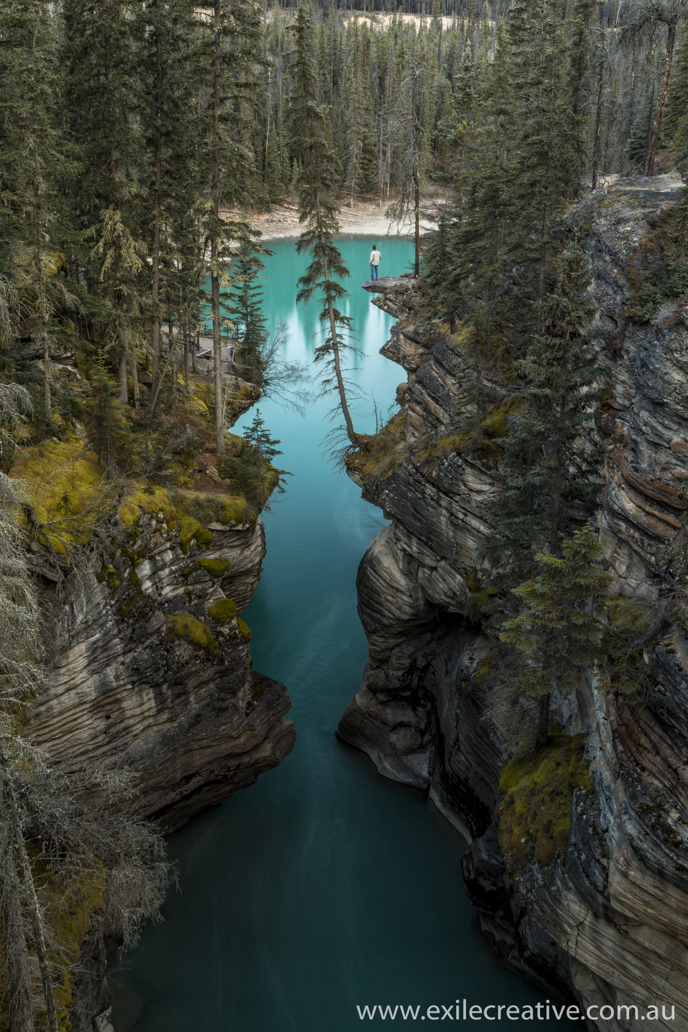 The selfie I've wanted for years - Athabasca Falls