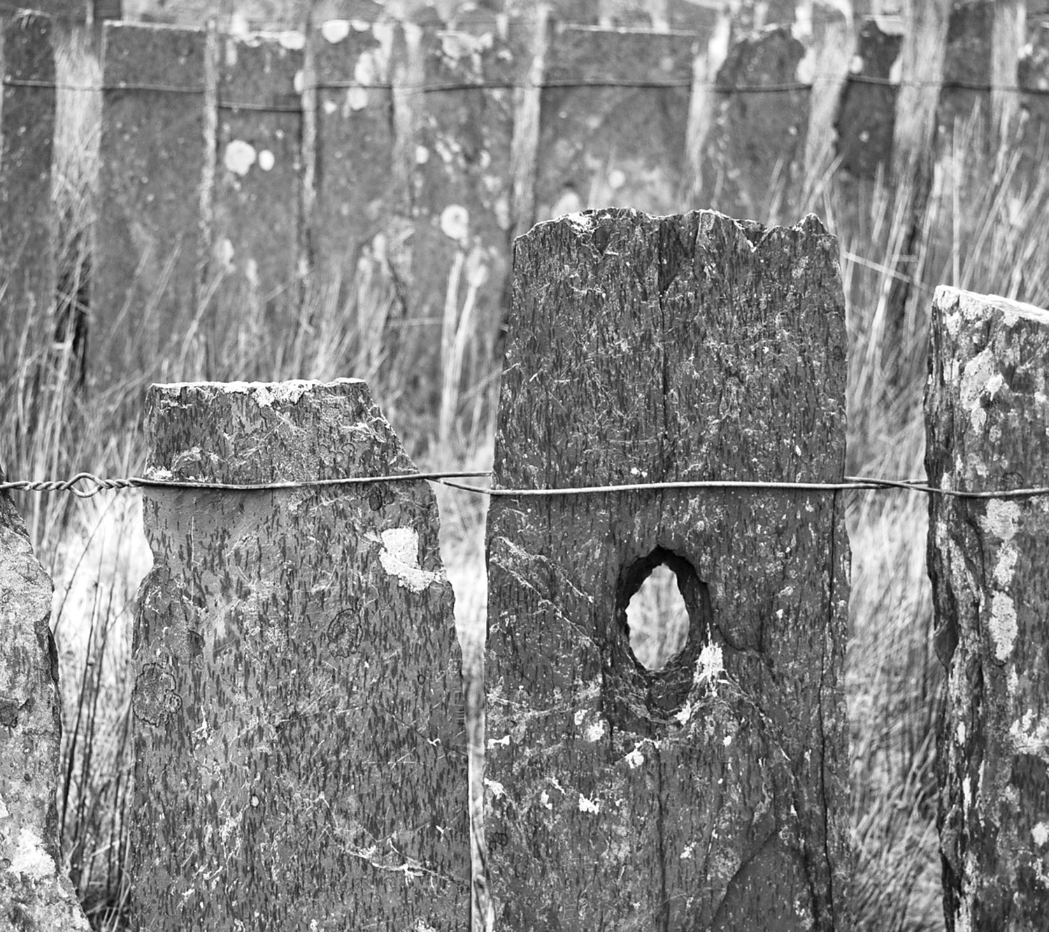 slate fence wales tactile walk carrie dickens