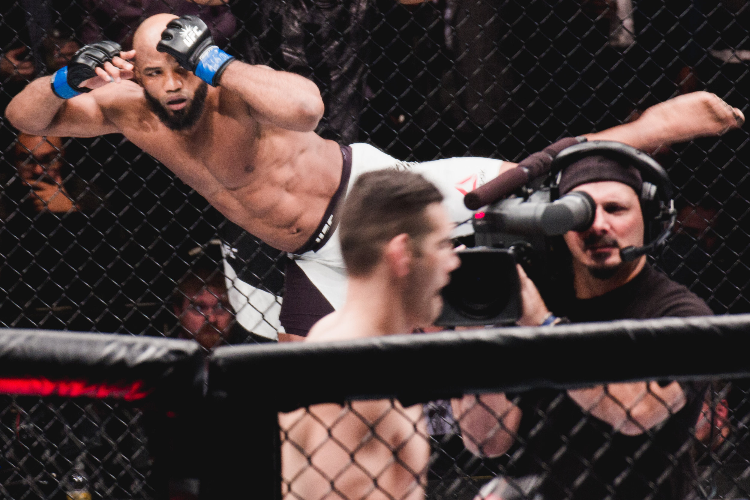 UFC 205-7.jpg