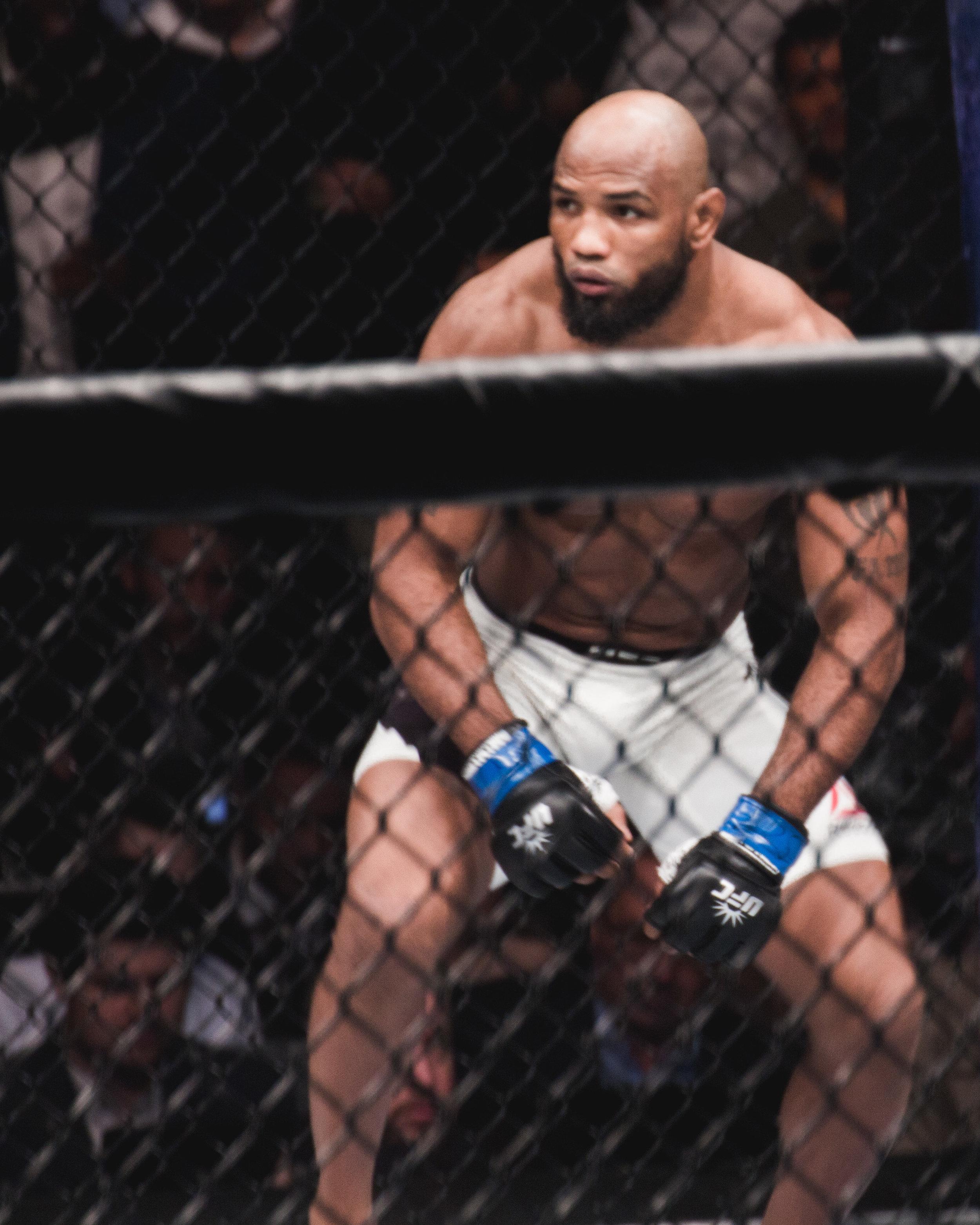 UFC 205-11.jpg