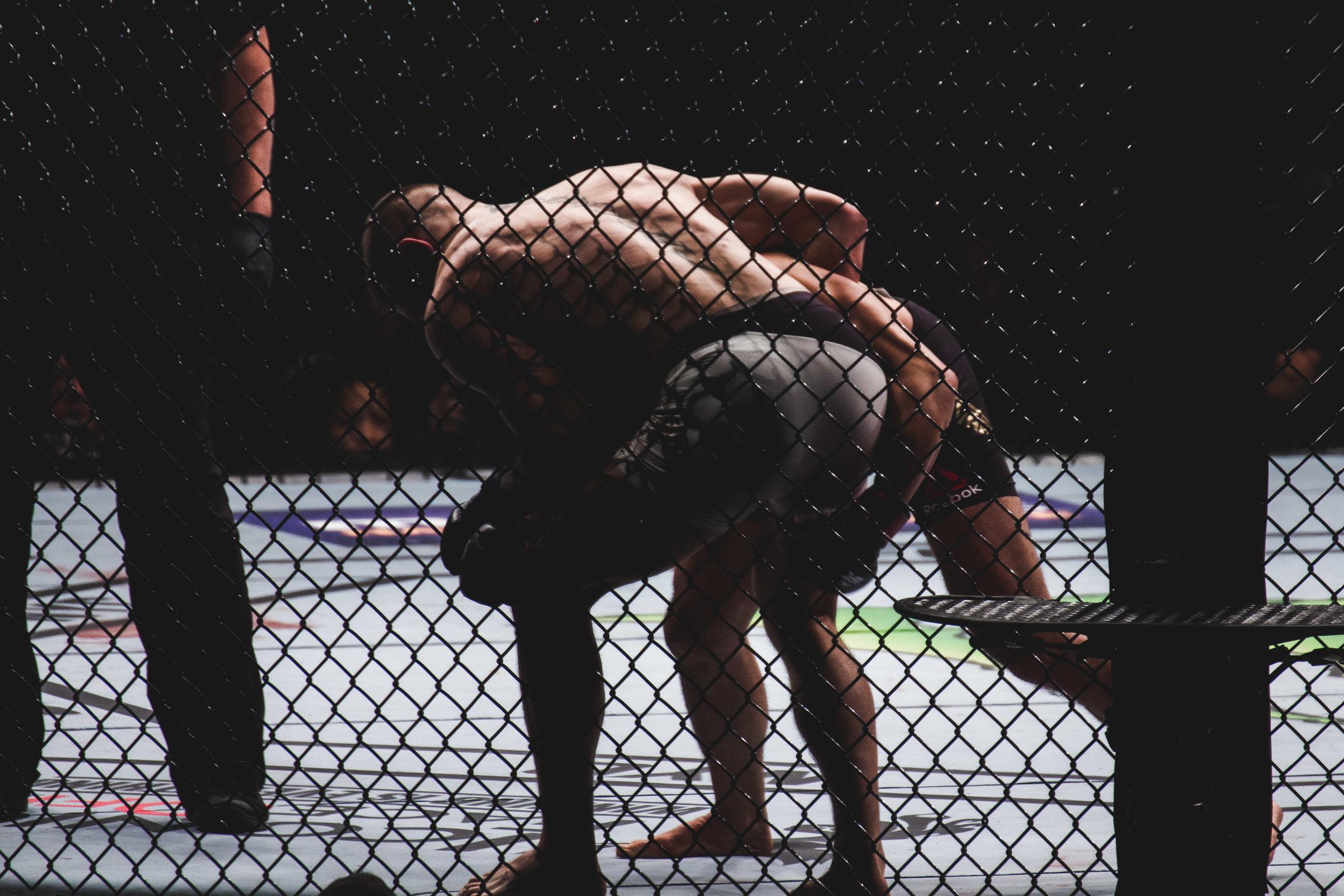 UFC 205-20.jpg