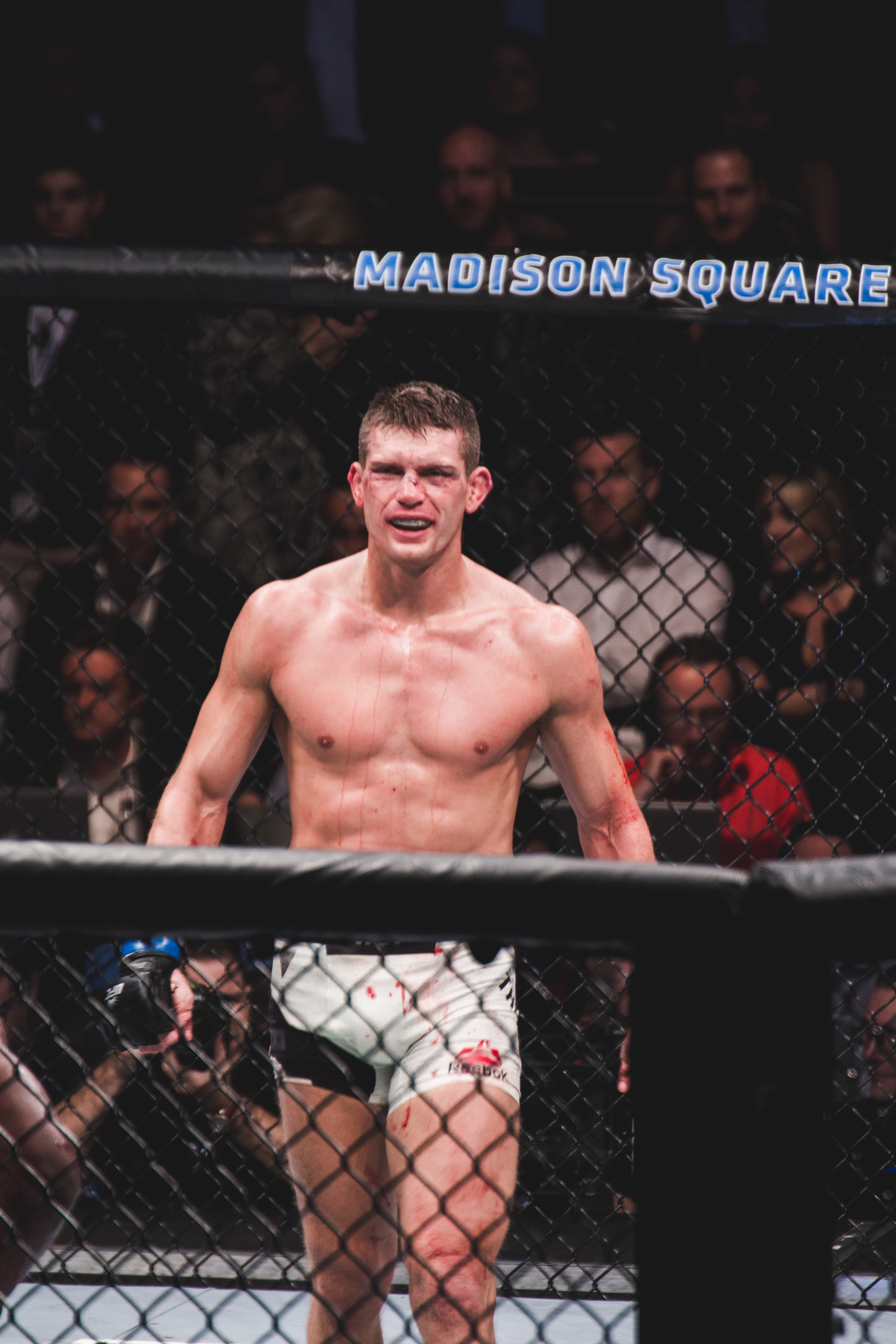 UFC 205-35.jpg