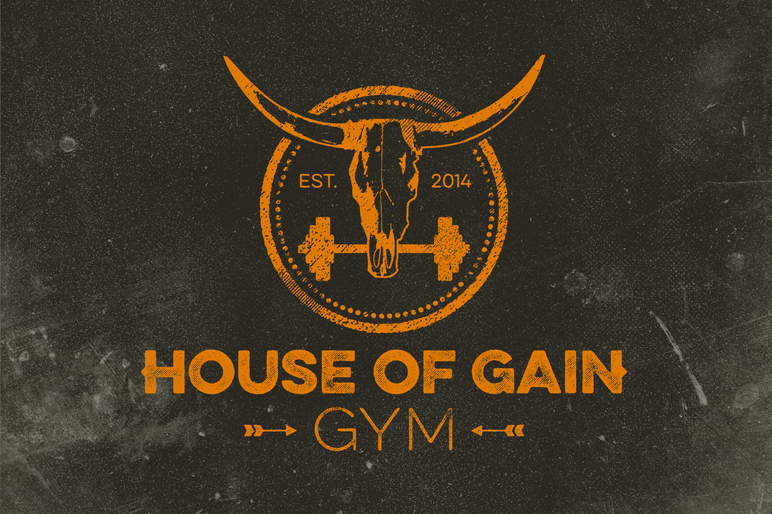 House of Gain Logo Orange on Dark Background.jpg