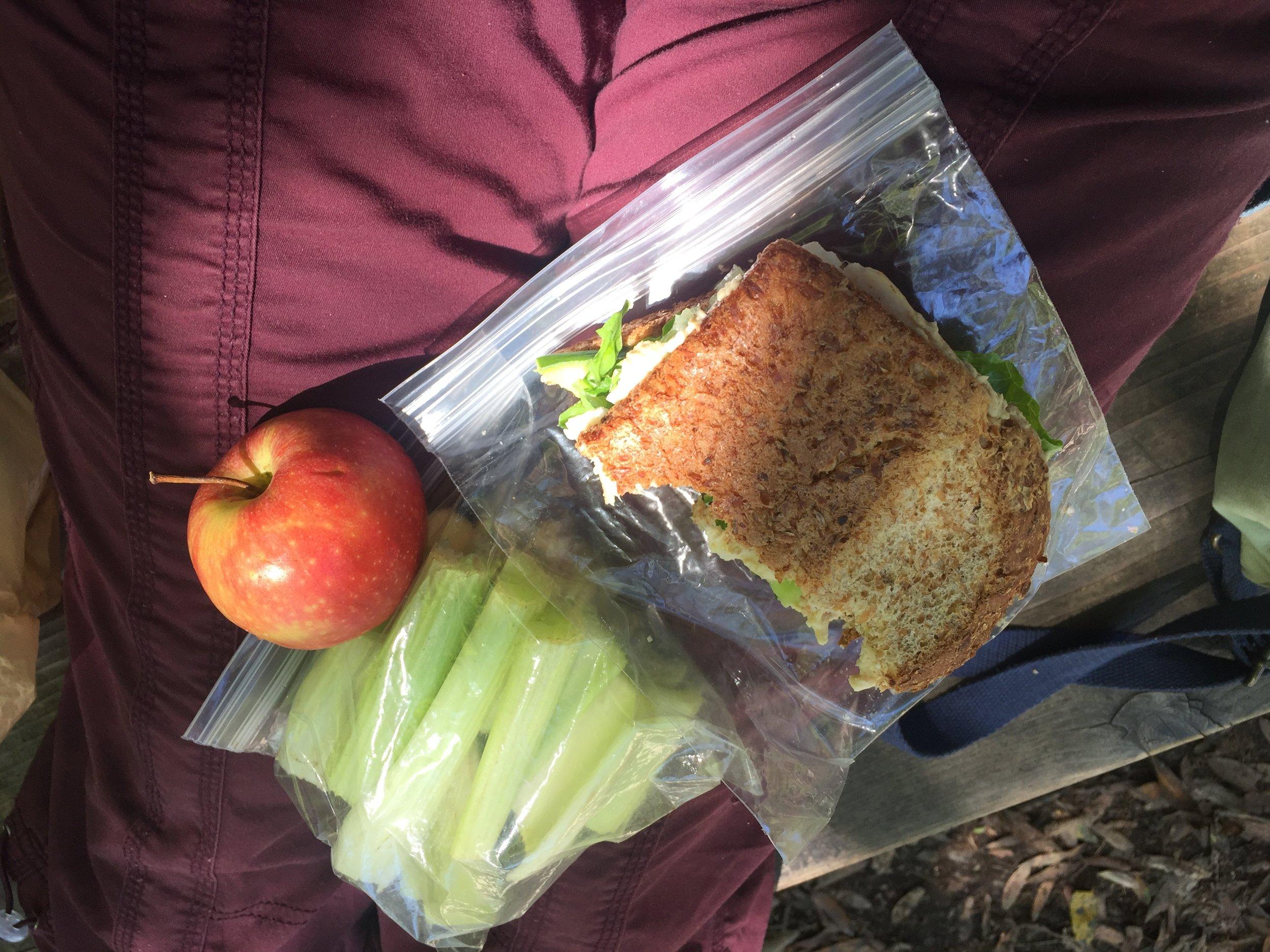 Pre-hiking lunch at John Muir Woods, California