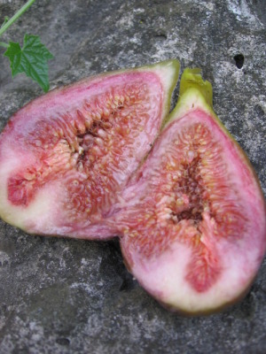 A truly ripe fresh fig packs a succulent burst of jam-like sweetness.