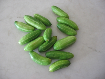Tindora, a.k.a. Ivy Gourd from the Indian bazaar