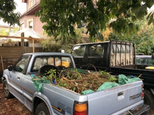 We turn onto Balmoral Road and drive about half a block before we see a small Mazda pickup truck filled with garden waste and black nursery pots.