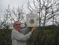 Jack Spruill, community fig orchard