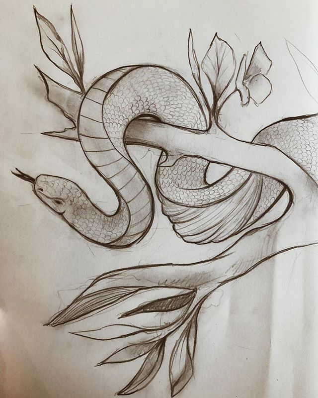 An in progress sketch 🐍