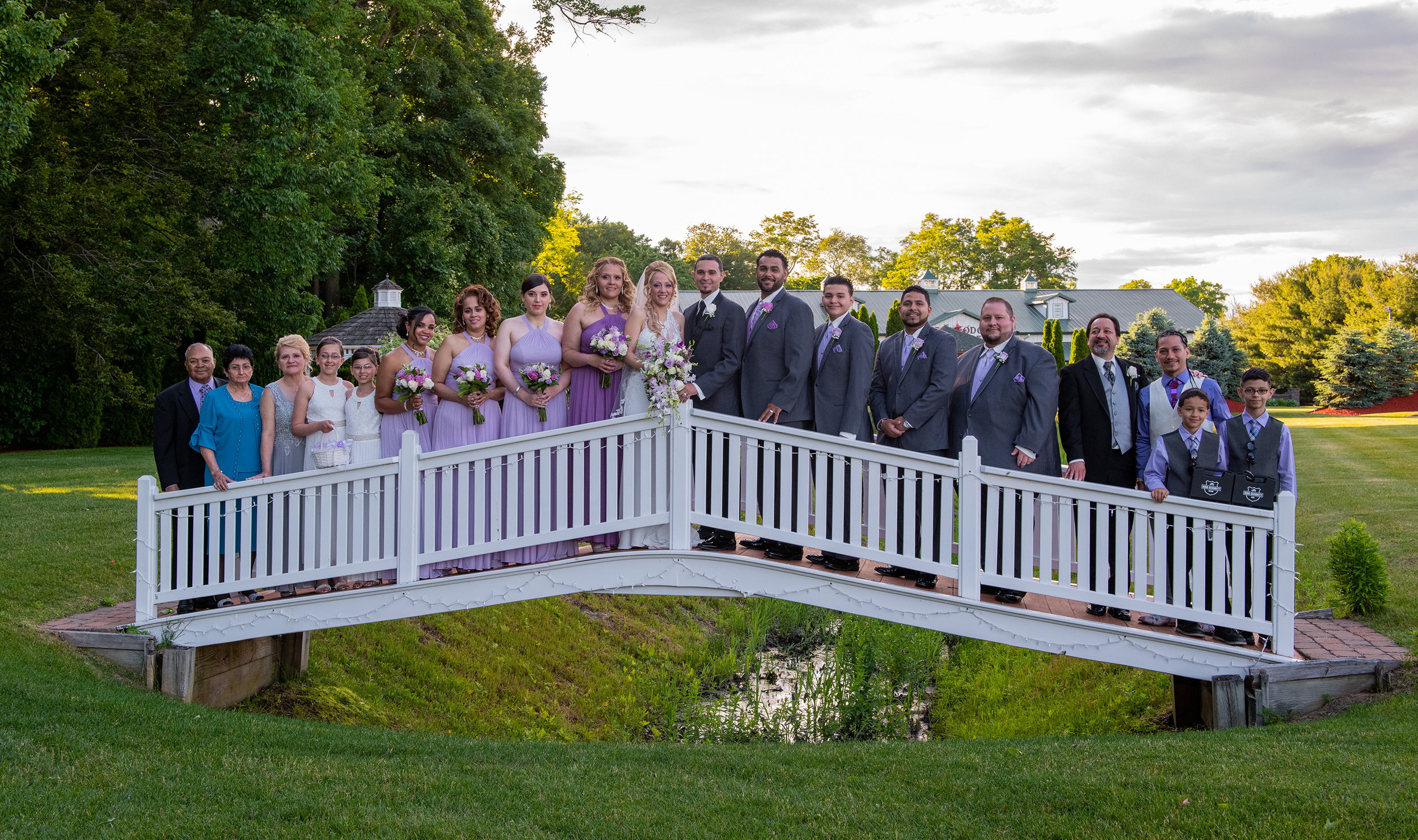 BRIDAL PARTY ON MANEELEYS BRIDGE.jpg
