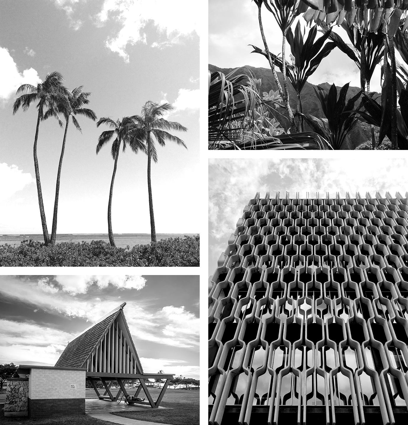 photos clockwise from top left: Waikiki palm trees, Ko'olau Mountains, IBM building, public restroom.