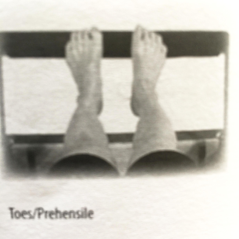 From Nora St. John's Level 1 On The Reformer Teacher Training Manual. (2008)
