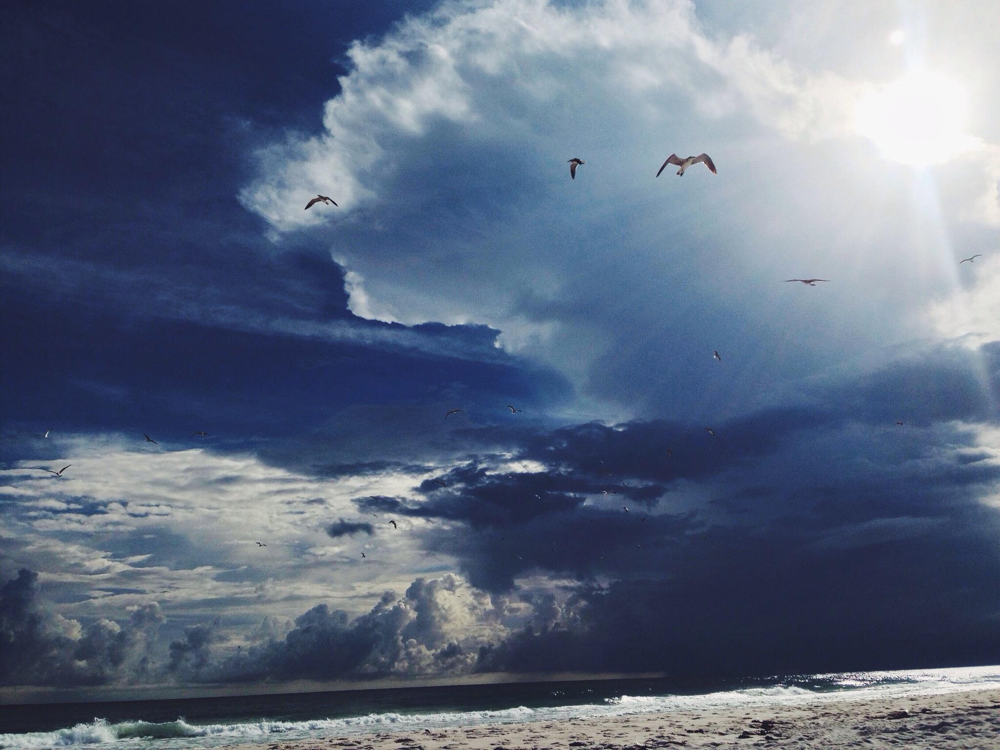 The Gulf.jpg