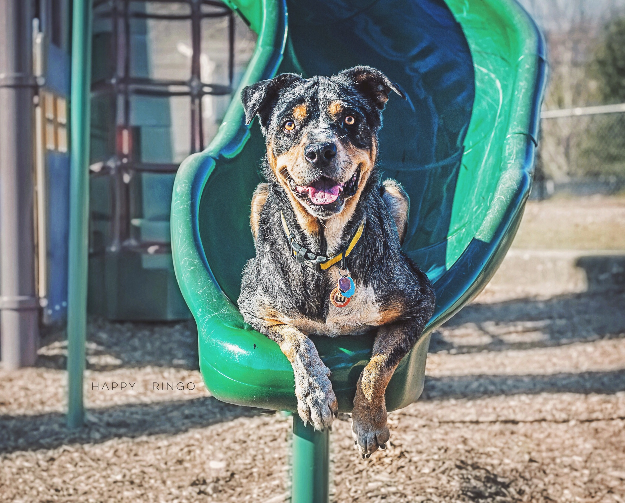 Hanging out at the playground :)