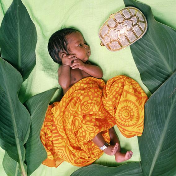 Infant 4_Turtle_web.jpg