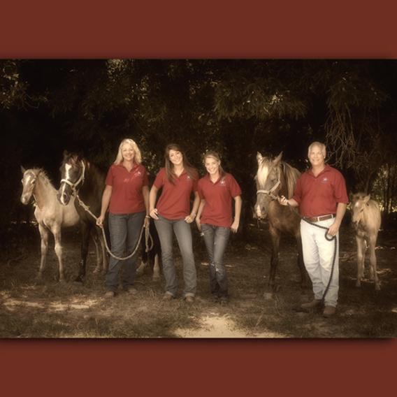 Animals 1_Drennon horses_web.jpg